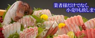 おすすめの魚、旬の魚をご紹介致します